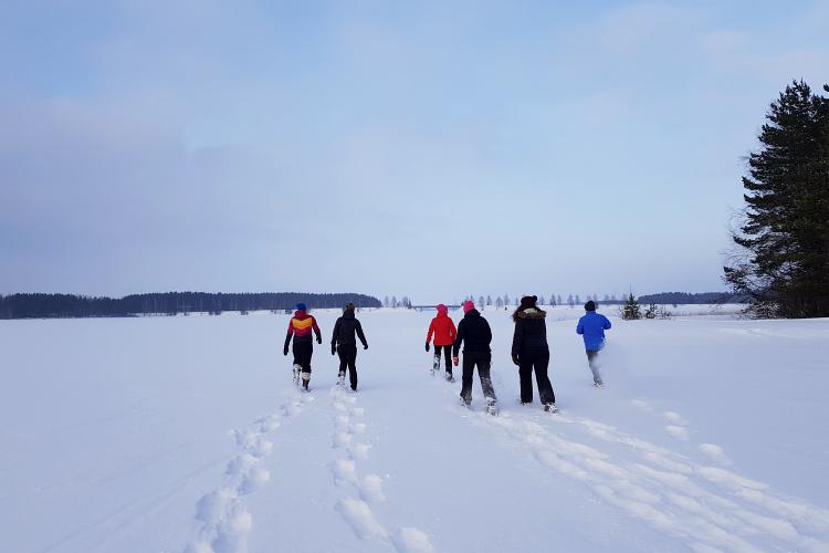 雪地鞋林中冒险