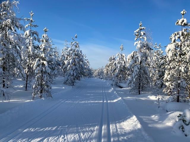 Talvinen latu luonnon keskellä.