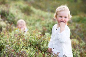 Pieni lapsi syö mustikoita metsässä.