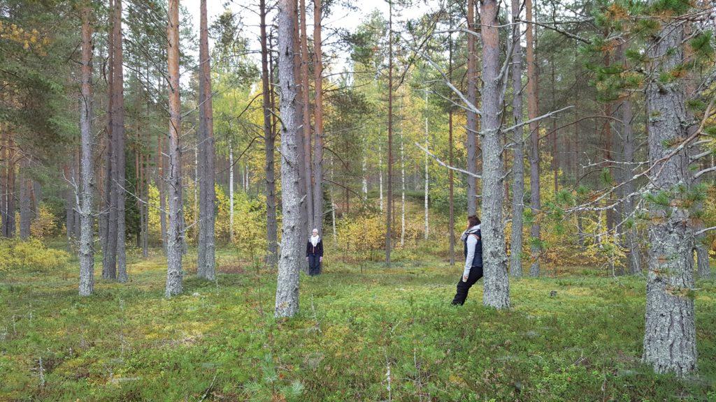 Kaksi naista nojaa mäntyihin Piispalan metsässä.